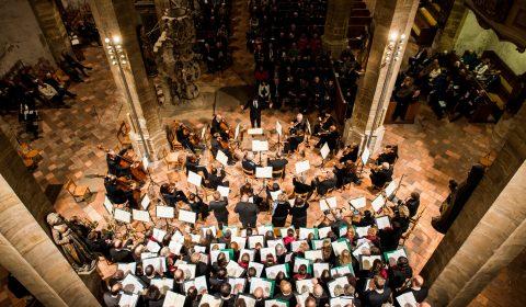Konzerterlebnis im Freiberger Dom.
