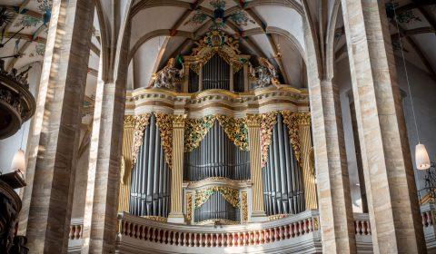 Große Silbermann-Orgel im Freiberger Dom